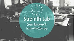 Streinth Lab – Christian GAIDDON